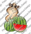 Digi Stamp - Meerie mit Melonen - colorierte Version